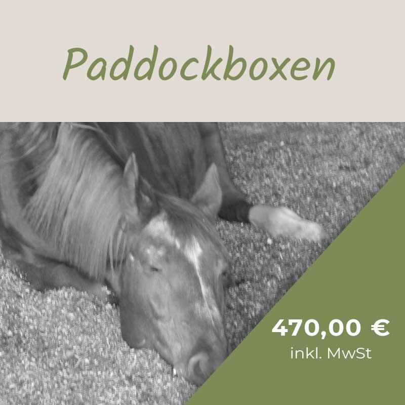 preise-paddockbox-gilching-paddockbox-starnberg-paddockbox-fuerstenfeldbruck-paddockbox-germering-paddockbox-puchheim
